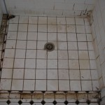 Grout covered with scum, body fat & mould in shower