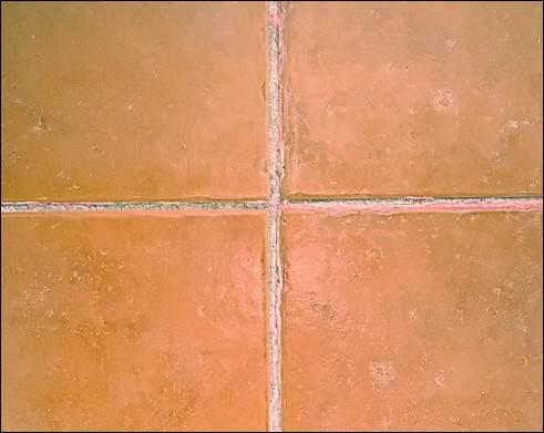 Cracked grout within a shower will allow water ingress, leakage